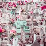 closeup cemetery