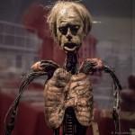CronenbergEvolutionTIff-AlejandroSantiago-4997