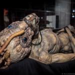 CronenbergEvolutionTIff-AlejandroSantiago-5020