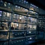 CronenbergEvolutionTIff-AlejandroSantiago-5109